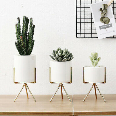 Blesiya 2Pcs Metal Plant Stand Flowerpot Planter Office Decor Silver M and L