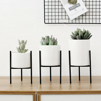 Blesiya 3Pcs Metal Plant Stand Succulent Flowerpot Planter Office Home Decor