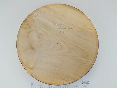 """One Large English Sycamore wood turning or carving bowl blank.  50mm (2"""") thick."""