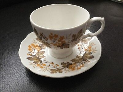 Royal Vale Pattern 8572 Tea Cup & Saucer