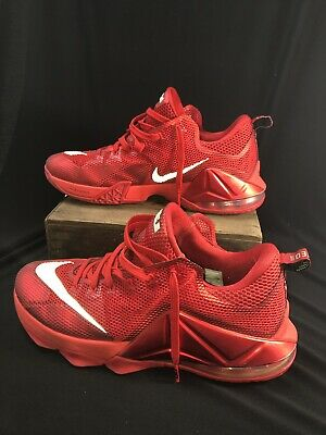 125dc5ac5e3 2014 Nike LEBRON XII 12 LOW UNIVERSITY RED OCTOBER SILVER BLACK SNEAKERS  -Sz 12