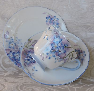 Shelley Bone China Blue Spray cups saucers & plates England c1950's Set of six