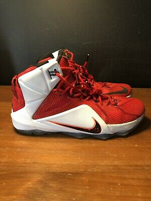 54cd94285dbef NIKE LEBRON XII 12 Heart Of A Lion Basketball Sneakers Size 10.5 ...