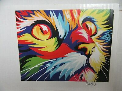 2 DIY Oil Paint by Number Canvas Rainbow Kitty Cat House Cat & Tropical Island