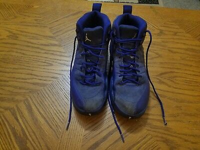 more photos 85f0d fe5da Nike Air Jordan 12 XII Retro Deep Royal Blue Suede White Grey Sz 10.5 130690 -