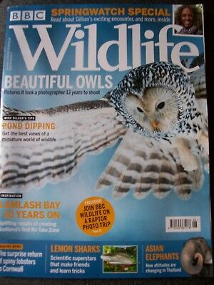 BBC Wildlife magazine.June 2018.