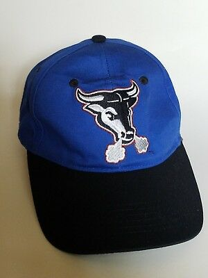 5c4acf884ef Durham Bulls MiLB Minor League Baseball Strapback Hat Cap Blue Pro Forma