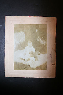 Vintage Sepia Cabinet Card Photo Baby/Toddler and Puppy Dog Outside by Tree