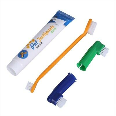 For Pet Dog Cat Chicken Flavour Toothpaste + Pet Toothbrush + Back Up Brush Set