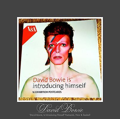 'David Bowie Is...Introducing Himself' Limited Edition V&A 16 Postcard Set =NEW=