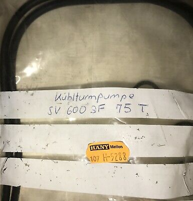 Wilo Mechanical Seal Kit SV6003F75T #1381