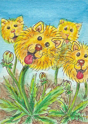 Pom de Lions dog Puppy ACEO PRINT EBSQ Loberg Animal mini Art pomeranian Flower