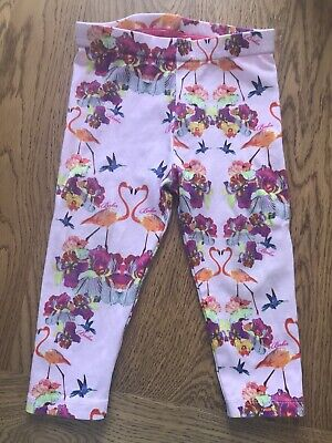 🌸Ted Baker Baby Girls Leggings, Age 9-12 Months🌸