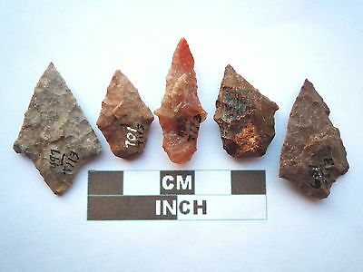 Native American Arrowheads x 5, Genuine Archaic Artifacts, 1000BC-8000BC (Y008)