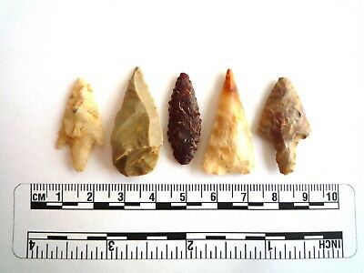 Neolithic Arrowheads x 5, High Quality Selection of Styles - 4000BC - (2432)