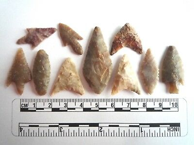 Neolithic Arrowheads x 10, High Quality Selection of Styles - 4000BC - (2455)