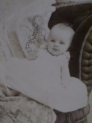 Antique Cabinet Photo-Darling Baby Girl,Lace,Chair-Studio Backstamp-Sedalia,MO