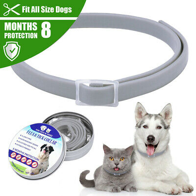 Dog Flea and Tick Collar Adjustable for Small Large Dogs 8 Month Protection