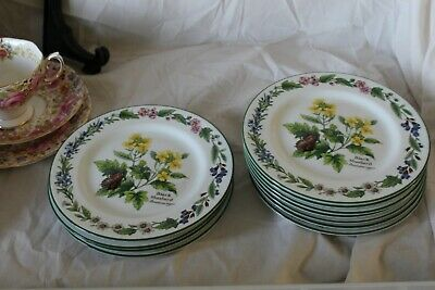 Royal Worcester Herbs Black Mustard 6.75 inches Plate 2nd unused