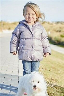 BNWT NEXT Girls Lilac Padded Coat Jacket With Hood & Fleece Lined 2-3-4-5-6 Year