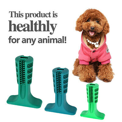 Dog chewable toothbrush to maintain dog oral hygiene chew toy