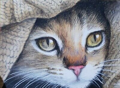 VERY CUTE CAT ORIGINAL ACEO Colored Pencil Painting Art Card ATC Brown
