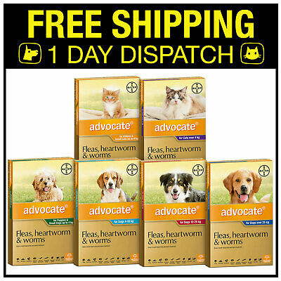 Advocate Flea Heartworm Treatment For Dogs & Cats - 12 Value Pack
