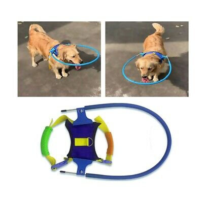 Safety Blind Dog Halo Harness Vest Ring Prevent Collide Wall- Pets Neck Chest UK