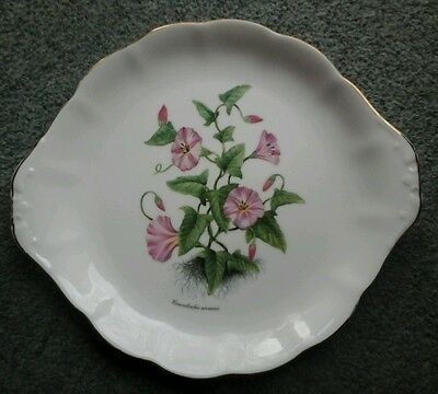 "Vintage Royal Vale China Cake Plate Flower "" Convoloulus Arvensis"""