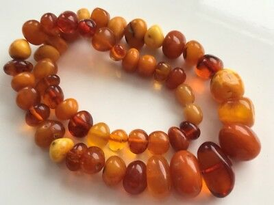 RARE Natural Antique Baltic Vintage Amber OLD BUTTERSCOTCH  BEADS Necklace 28.71