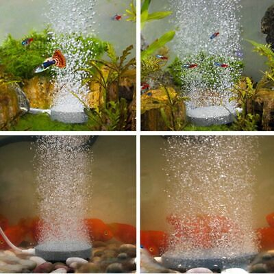 Air Bubble Disk Stone Aquarium Aerator Fish Tank Tube Pump Hydroponics Oxygen