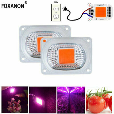 Full Spectrum 20W 30W 50W COB LED Grow Light Chip with Lens for Plant Flood Lamp