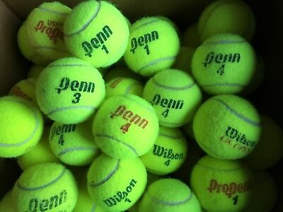 50 Tennis Balls Used Mixed | Chairs, Tables, Dogs, Sports, Walkers, Crafts, etc.