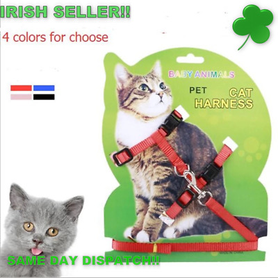 Cat Harness and lead  (4 Colours to choose from)