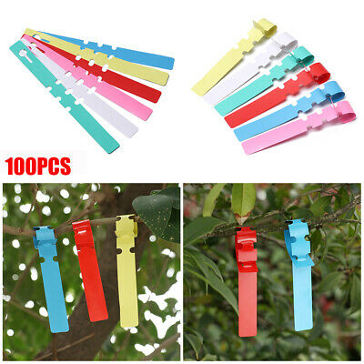 100pcs Garden Hanging Plant Tags Fruit Signs Prompt Card Classification Labels