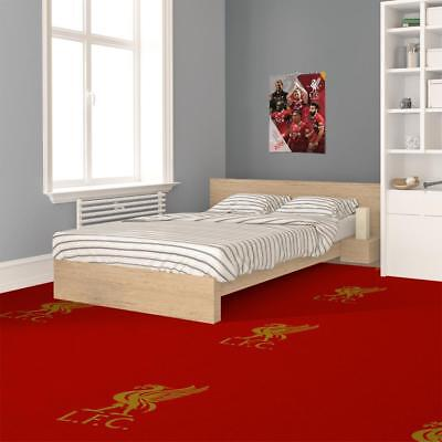 Liverpool FC Luxury Carpet - Official Club Product - Located @ Anfield  4m Wide