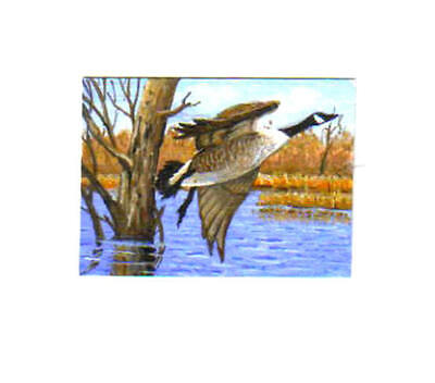 Original wildlife ACEO  painting of  Canada Goose  by R.D.Heffron