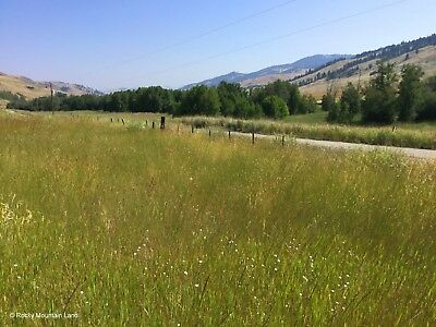 13.94 Acres Washington County Road Frontage Electric Two Miles To Canada