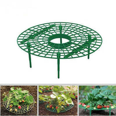 1pc 30*30cm Durable Handy Plant Support Anti-rot Strawberry Support Garden Tool