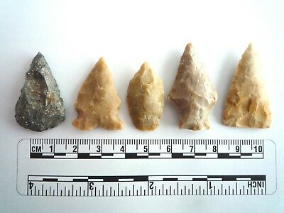 5 x Native American Arrowheads found in Texas, dating from approx 1000BC  (2234)