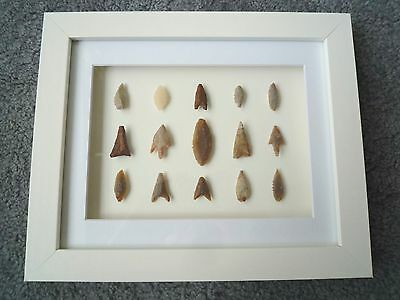 Neolithic Arrowheads in 3D Picture Frame, Authentic Artifacts 4000BC (Z086)