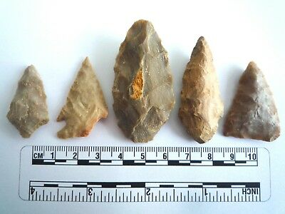 5 x Native American Arrowheads found in Texas, dating from approx 1000BC  (2206)