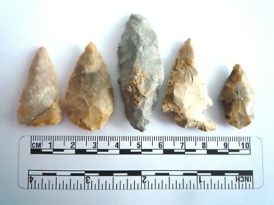 5 x Native American Arrowheads found in Texas, dating from approx 1000BC  (2226)