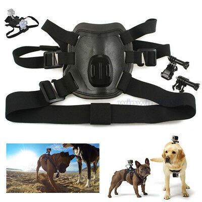 Fetch Control Dog Harness Pet Chest Shoulder Strap Belt Mount For Gopro 5 4 3+