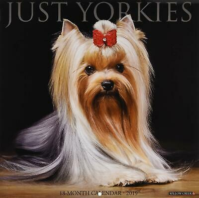 Just Yorkies 2019 Wall Calendar (Dog Breed Calendar)