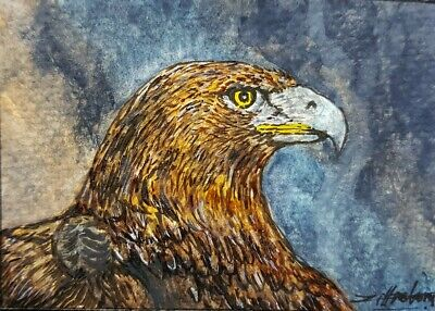 ORIGINAL ACEO Watercolor Painting Art Eagle Bird Hawk America Collect Gift