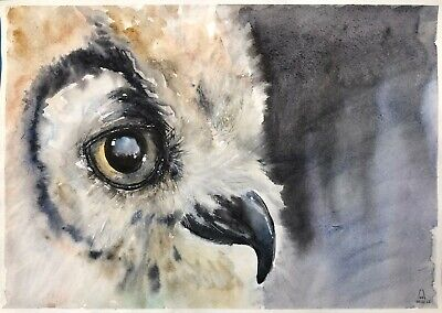 original painting art OWL watercolor 15LM-X peinture originale A3