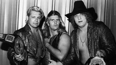 The Freebirds & Hayes/Gordy/Roberts Matches-45 Volume Compliation-Pro Wrestling