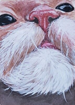 VERY CUTE CAT ORIGINAL ACEO Painting Art OOAK Fur Collect Birthday Gift Card