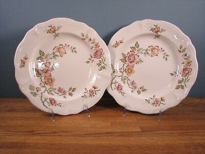 Florganza Ironstone China dinner plate - set of 2 - Made in Japan-
